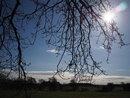 Into Sun | 1/2000 sec | f/8 | 15.0 mm | ISO 200
