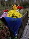 Flower Tribute | 1/125 sec | f/5.6 | 16.0 mm | ISO 200