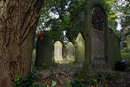 Graveyard | 1/60 sec | f/8.0 | 28.0 mm | ISO 100