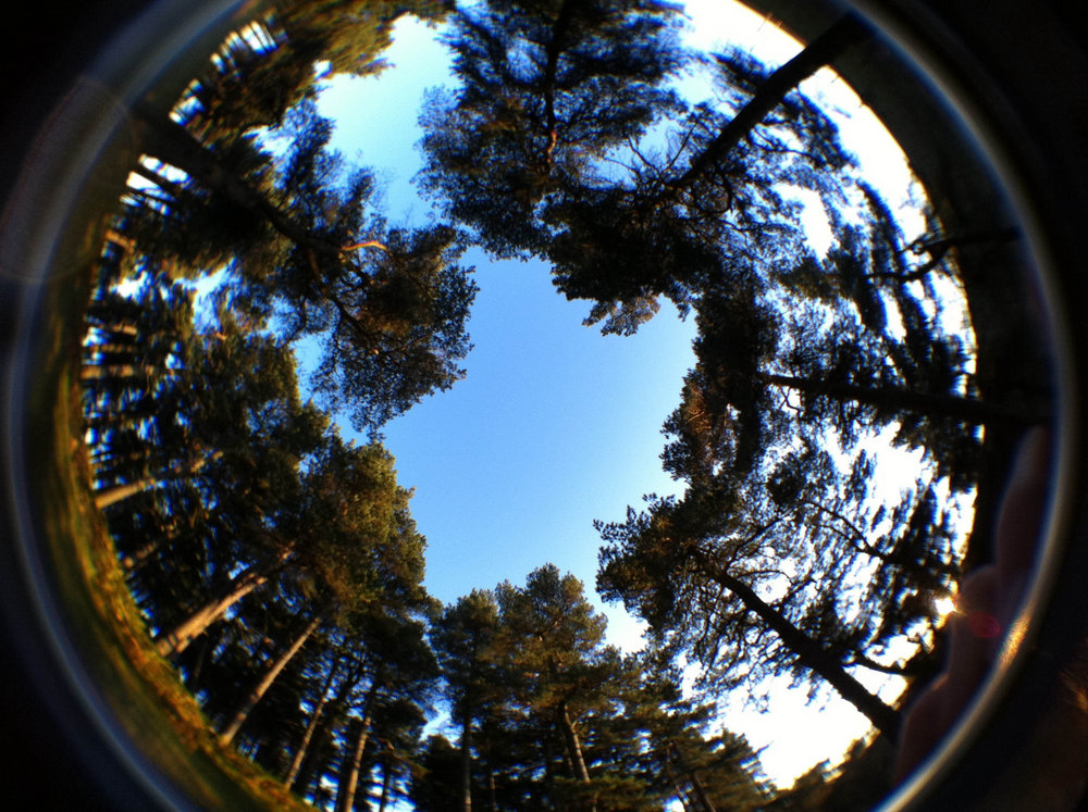Win A Free Iphone 6 >> USB Fever 190 degree Fisheye lens for iPhone Images