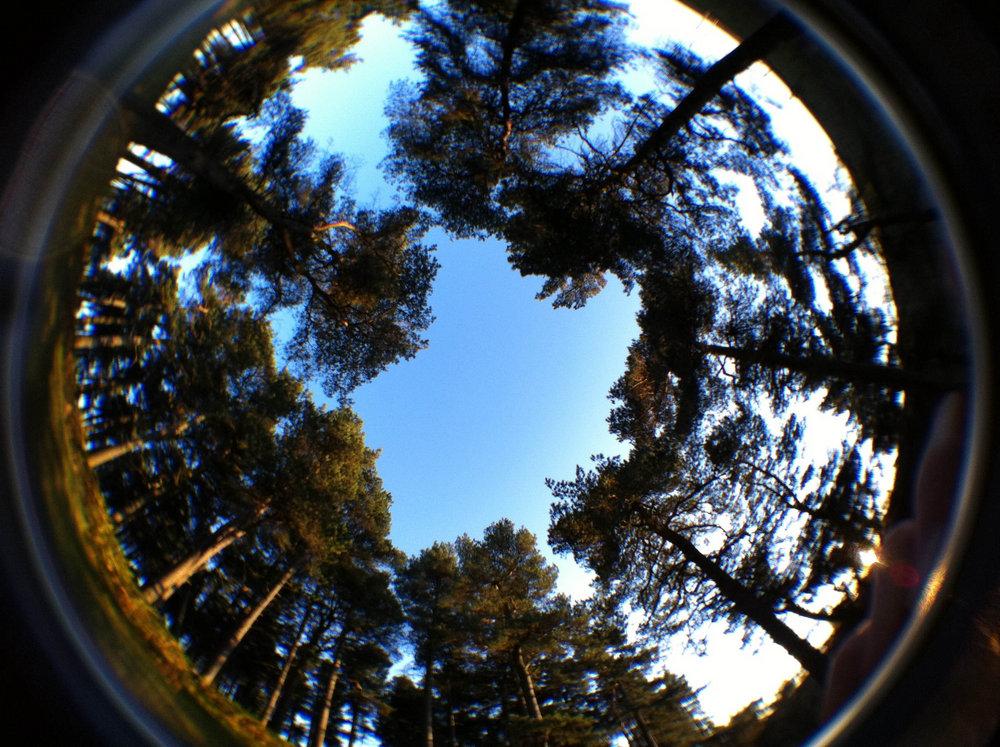 Usb fever 190 degree fisheye lens for iphone images for Fish eye lens