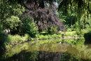 Damhouse Pond   1/80 sec   50.0 mm   ISO 200