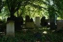 Old Graveyard   1/20 sec   50.0 mm   ISO 200