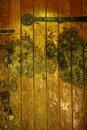 Texture In Old Wooden Door   1/15 sec   50.0 mm   ISO 200