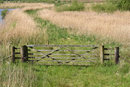Wetlands Gate | 1/1600 sec | f/5.6 | 98.0 mm | ISO 400