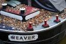 Weaver   1/40 sec   f/8.0   80.0 mm   ISO 200