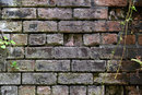 Texture In Old Brick At F8 | 1/8 sec | f/8 | 85.0 mm | ISO 100