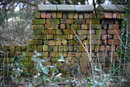 Old Boundary Wall | 1/80 sec | f/4.0 | 180.0 mm | ISO 400