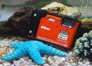 Nikon Coolpix W300 Underwater
