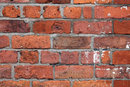 Texture In Old Brick | 1/20 sec | f/8.0 | 100.0 mm | ISO 100