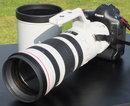 Canon EF 200 400mm F4L USM 1 (2)