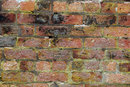 Texture In Old Brick | 1/100 sec | f/8.0 | 135.0 mm | ISO 400