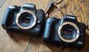 "Canon EOS M5 Vs M50 (3)   <a target=""_blank"" href=""https://www.magezinepublishing.com/equipment/images/equipment/EOS-M50-6733/highres/Canon-EOS-M5-Vs-M50-3_1519289150.jpg"">High-Res</a>"