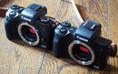 "Canon EOS M5 Vs M50 (6)   <a target=""_blank"" href=""https://www.magezinepublishing.com/equipment/images/equipment/EOS-M50-6733/highres/Canon-EOS-M5-Vs-M50-6_1519289185.jpg"">High-Res</a>"