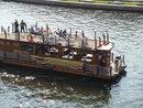 Boat Waving | 1/350 sec | f/4.2 | 17.3 mm | ISO 80