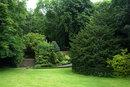 Garden Landscape | 1/500 sec | f/5.0 | 50.0 mm | ISO 400