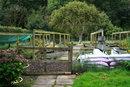 Garden Landscape | 1/100 sec | f/8.0 | 50.0 mm | ISO 200