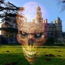 "Scary skull | <a target=""_blank"" href=""https://www.magezinepublishing.com/equipment/images/equipment/FX-Photo-Studio-3685/highres/fxstudiostudioscaryskull_1321610156.jpg"">High-Res</a>"