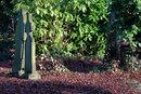 Gravestones | 1/25 sec | f/8.0 | 200.0 mm | ISO 200