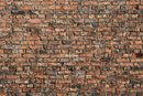 Texture In Old Brick Wall | 1/80 sec | f/8.0 | 80.0 mm | ISO 200