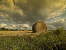 "Photo of hay bales taken with 84.5mm Full Gradual Orange graduated filter | <a target=""_blank"" href=""https://www.magezinepublishing.com/equipment/images/equipment/Full-Gradual-Orange-Classic-Line-4875/highres/84_1348508264.jpg"">High-Res</a>"