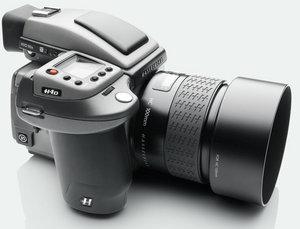 H4D-31