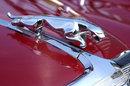 Close Up Classic Jaguar | 1/400 sec | f/11.0 | 135.0 mm | ISO 400
