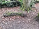 Log | 1/50 sec | f/2.2 | 3.8 mm | ISO 160