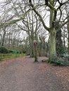 Woods | 1/50 sec | f/2.2 | 3.8 mm | ISO 80