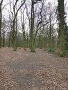 Woods | 1/100 sec | f/1.8 | 4.8 mm | ISO 125