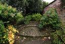 Garden Scene | 1/20 sec | f/11 | 8.0 mm | ISO 400