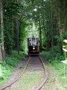 Tram In Woodland | 1/80 sec | f/2.8 | 50.0 mm | ISO 400