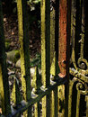 Texture In Old Metal Gate | 1/40 sec | f/8.0 | 60.0 mm | ISO 200