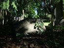 Leica DG 10 25mm F1,7 Graveyard Rock | 1/60 sec | f/8.0 | 25.0 mm | ISO 200