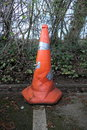 Cone | 1/200 sec | f/2.8 | 9.1 mm | ISO 125