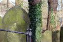 Grave | 1/125 sec | f/4.0 | 146.0 mm | ISO 160