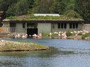 Flamingo House   1/400 sec   f/8.0   100.0 mm   ISO 400