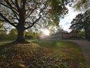 Sheffield Botanic Gardens - UWA | 1/402 sec | f/2.2 | 4.0 mm | ISO 50