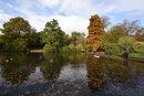 Dunham Landscape | 1/250 sec | f/11.0 | 15.0 mm | ISO 400