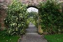 Garden Gate | 1/30 sec | f/11.0 | 25.0 mm | ISO 200