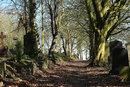 Cemetery Path | 1/160 sec | f/6.3 | 73.0 mm | ISO 100