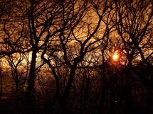 "Sunset Mode | 1/400 sec | f/3.6 | 9.6 mm | ISO 100<br /><a target=""_blank"" href=""https://www.magezinepublishing.com/equipment/images/equipment/Optio-VS20-3967/highres/sunsetIMGP0120_1334588709.jpg"">High-Res</a>"