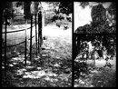 Frame3 | 1/100 sec | f/6.3 | 42.0 mm | ISO 200