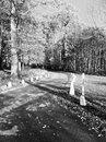 Black & White HDR