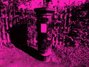 Punk | 1/270 sec | f/5.6 | 12.0 mm | ISO 200