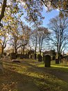 Graveyard | 1/838 sec | f/1.8 | 4.4 mm | ISO 57