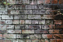 Texture In Old Brick | 0.3 sec | f/8.0 | 85.0 mm | ISO 400