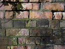 Texture In Old Brick | 1/250 sec | f/0 | 0.0 mm | ISO 200