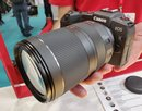Canon RF 24 240mm (4) (Custom)