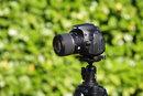 Tamron SP AF 60mm F/2.0 Di II LD (IF)